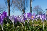 Mátrai pihenés Tavasz (hétvége)