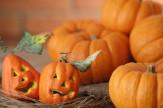 Halloweeni hétvége a Fried Kastélyban