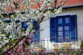 Illatos kisvárosi tavasz hétköznap