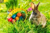 Nem ússza meg szárazon- Húsvét a Kavicsban