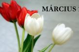 Március 15-i hosszú hétvége [3 éj]