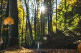 Kalandos felfedezés az őszi szünetben