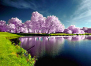Tavaszi wellness akciók