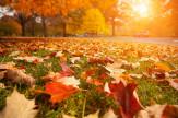 Őszi szünet (min. 3 éjszaka)