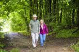 Senior erdei wellness napok hétköznap