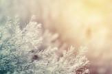 Téli árszállingózás - HÉTKÖZNAP
