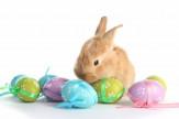 Húsvét a Silverben- 3 éjszaka