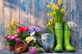 Tavaszi Balaton