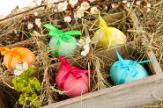 Húsvéti NYULatság! - 3 éjszaka